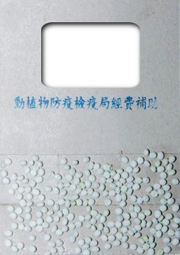 利用本土的平腹小蜂 產卵在代用寄主的卵中,黏在紙片上