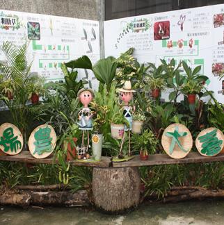 角落改善後以熱帶雨林植栽為主題1
