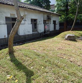 麵包場後方植栽及綠帶改善
