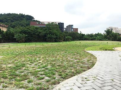 益康花園草坪補植現況