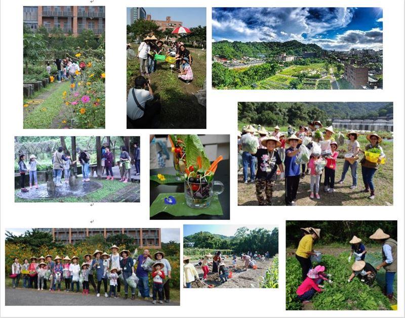 蔬活菜園全體驗活動照片