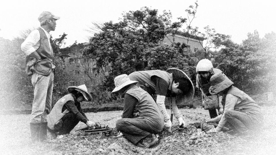 志工豆豆班作物移植