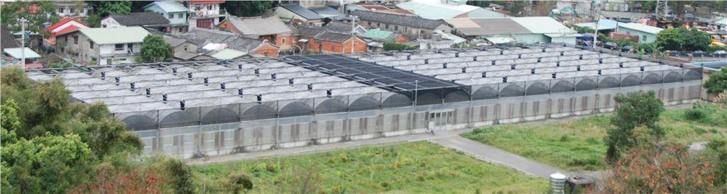 園藝溫室為九間連棟式有風扇、水牆、遮蔭設備之溫室