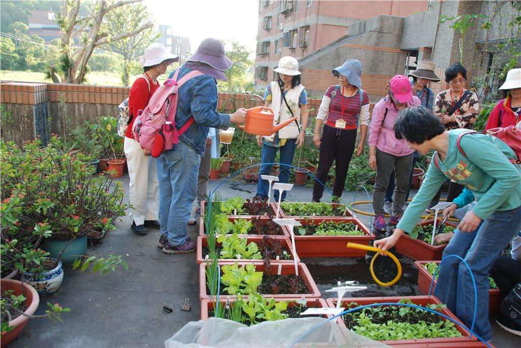 樂活養生系列課程學員種植盆栽菜園