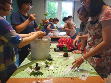 DIY課程-製作苔球