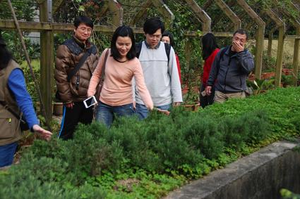 園藝植物觀賞